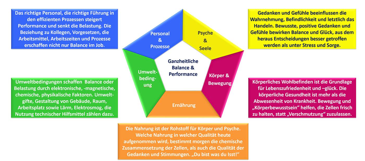 Energiemedizin, körperliche Fitness, Essverhalten, Emissions- & Schallmessung